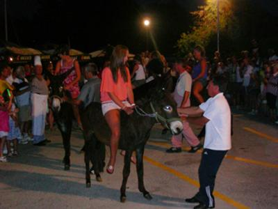 donkey tradition